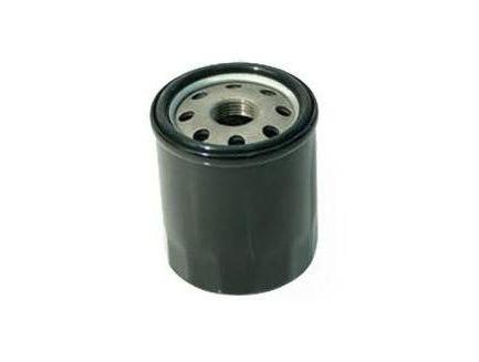 Filtre à huile long B&S 491056