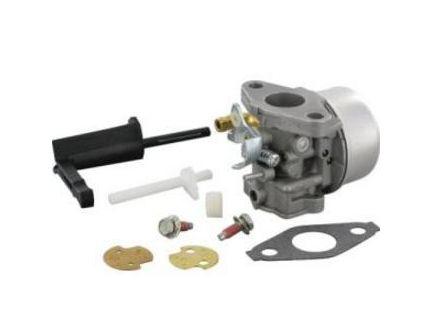 Carburateur BRIGGS et STRATTON 798653
